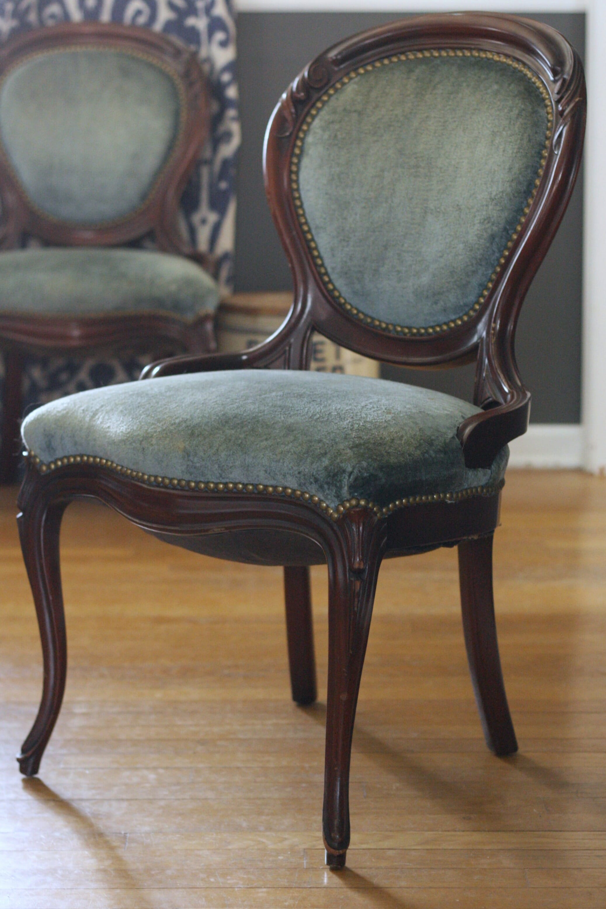 Blue Velvet French Dining Chairs : dining5 from primitiveandproper.com size 2075 x 3113 jpeg 1072kB