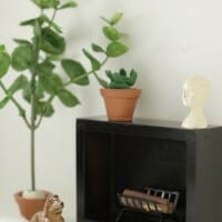 DIY Miniature Clay Cacti & Fiddle Leaf Fig