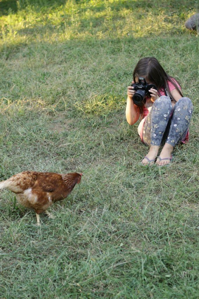 Emmy-Shooting-Photo-Star-Hen