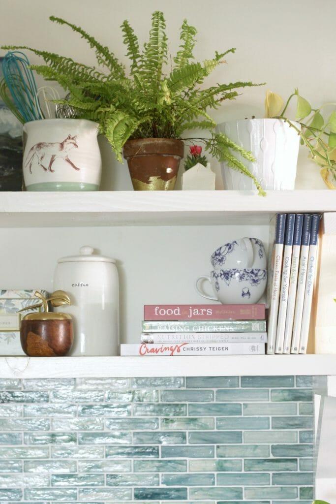 little-fern-on-kitchen-open-shelving