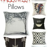 Affordable Seasonal & Halloween Pillows
