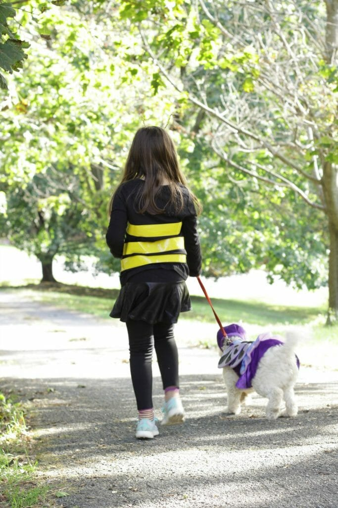 Child & Puppy costume pair- bee & butterfly