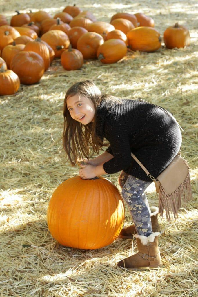 emmy-pumpkin-patch