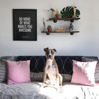 Fearless Home October Features
