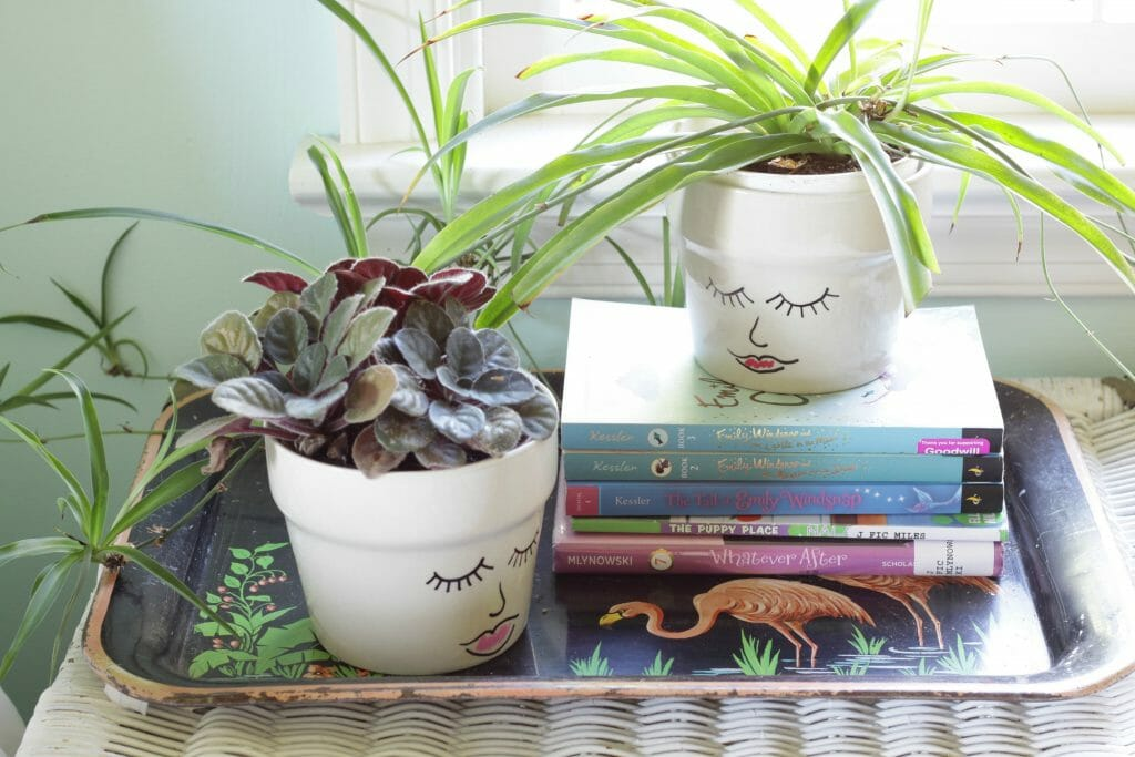 Vintage Flamingo Tray and DIY Face Planters