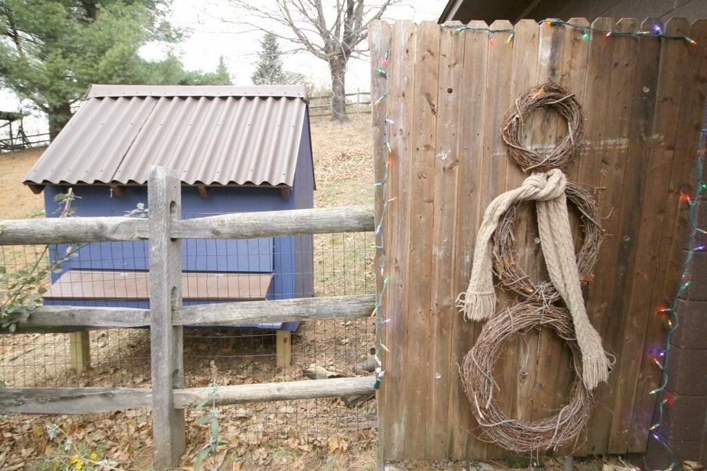 Chicken Coop and fence snowman