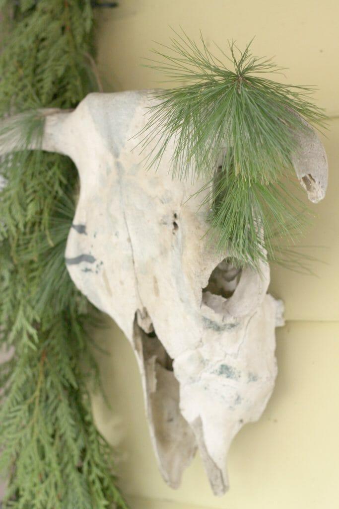 Bull Skull with Greenery for Christmas