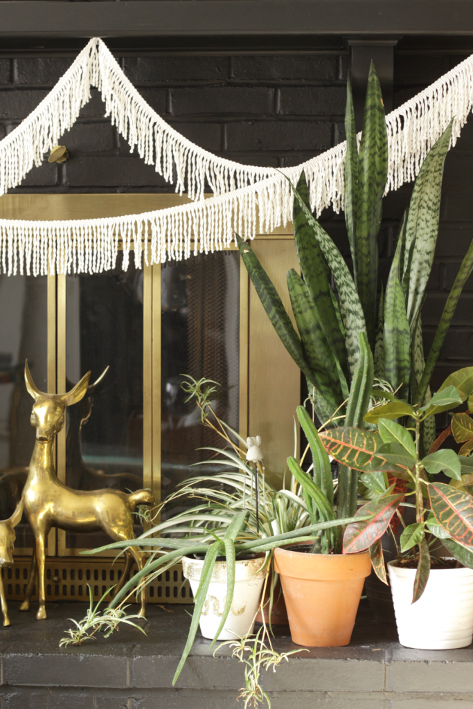 Plant Lovers Boho Winter Mantle- hearth Styling