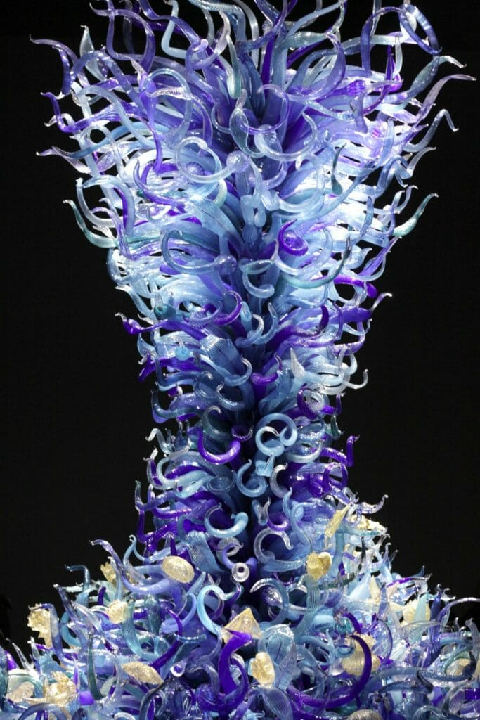 Chihuly Glass- Sea Life
