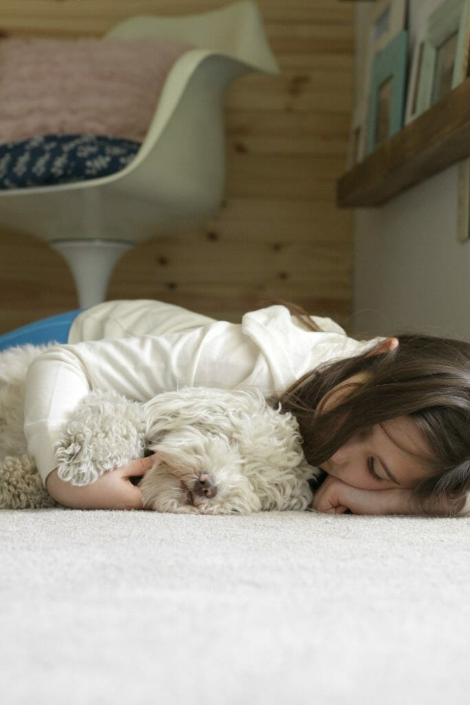 PetProof Carpeting- perfect for families with animals