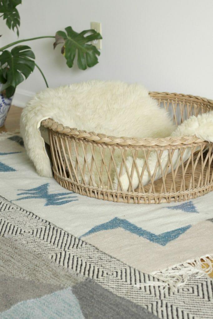 Vintage Dog Bed in Living Room