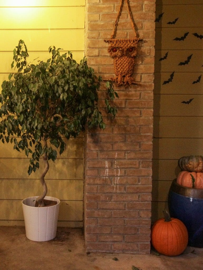 Halloween Porch with Tree with eyes