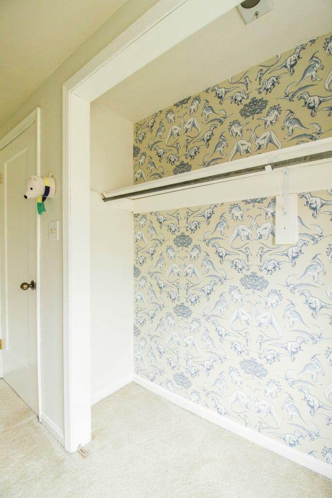 Dinosaur Closet Wallpaper