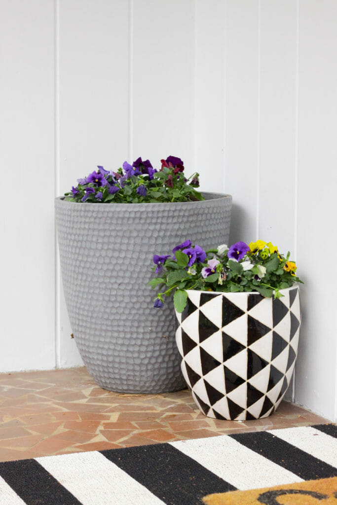 modern porch planters with pansies