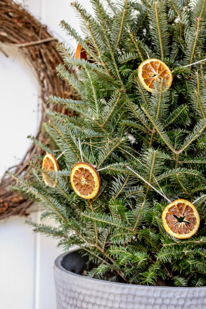 orange slice tree decor
