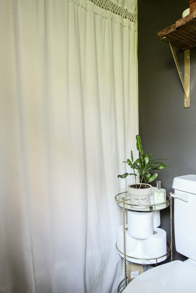 plant in bathroom corner