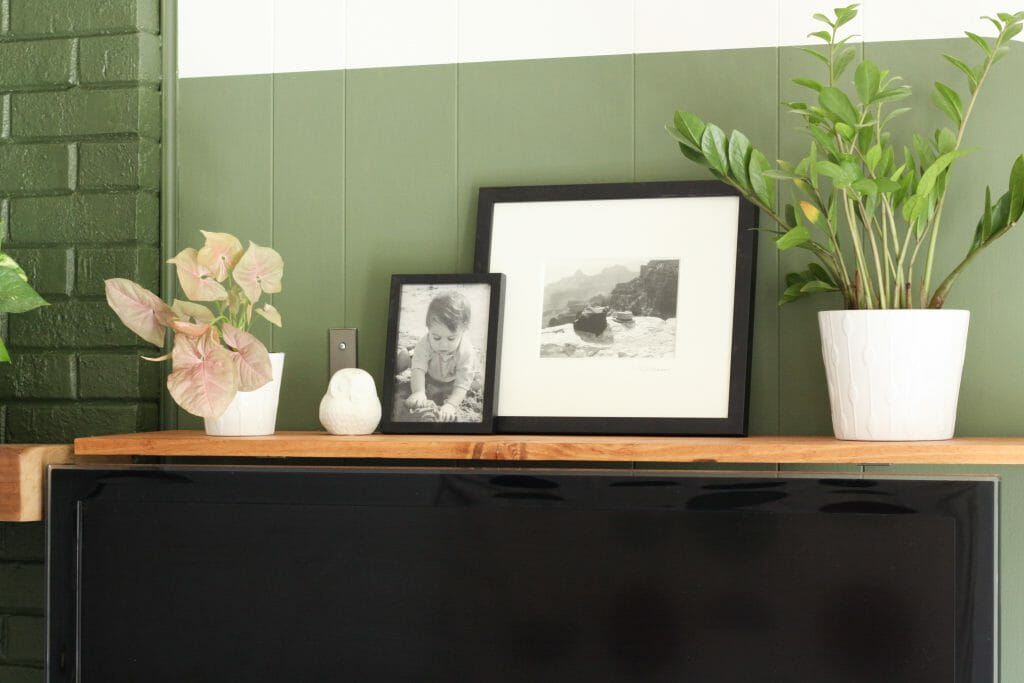modern boho shelf styling with plants
