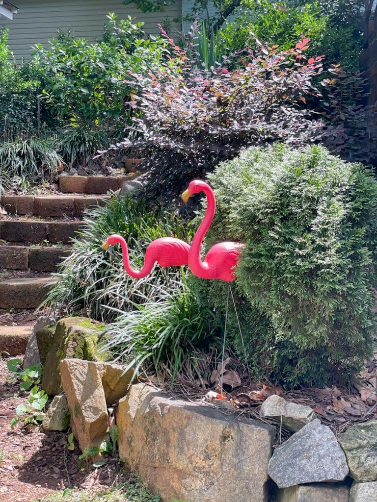 vintage pink yard flamingos